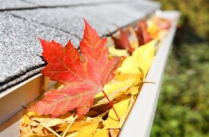 A close up of a rain gutter filled with fall leaves